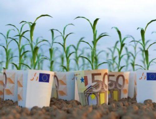 Agriculture biologique: les retards de paiement des aides bientôt rattrapés?