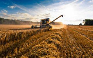 Bail rural: quand les usages agricoles s'appliquent