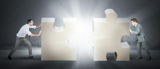 Allègement de la procédure des fusions de sociétés