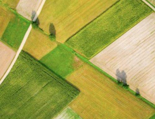 Le marché des terres agricoles en 2018