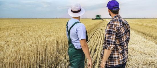 L'obligation de cotiser au régime des non-salariés agricoles