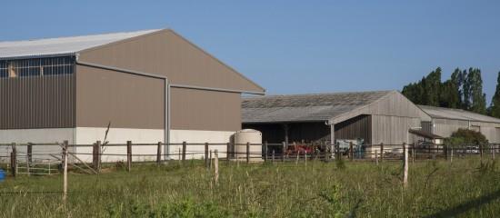 Indemnisation d'un agriculteur en fin de bail: gare au respect des conditions requises!