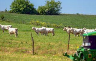 Fiscalité agricole: quelles sont les nouveautés pour2020?