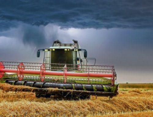 Assurance récolte: les taux de subventions sont reconduits pour2020