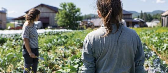 L'agriculture a besoin de bras