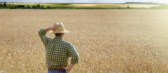 Droit de préemption du fermier en cas de vente d'un terrain agricole