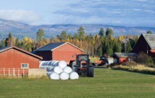 Baux ruraux: légère hausse de l'indice national des fermages
